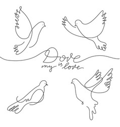 dove in line art style vector image