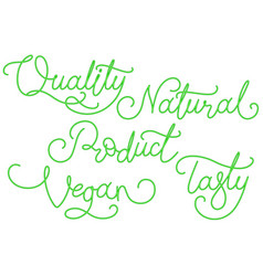 natural vegan product calligraphy inscription vector image