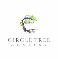 Tree and roots logo design isolated abstract vector