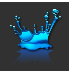 splashing water with reflection vector image vector image