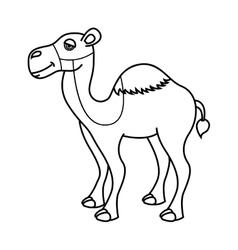 Camel desert isolated icon design vector