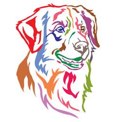 colorful decorative portrait of dog toller vector image