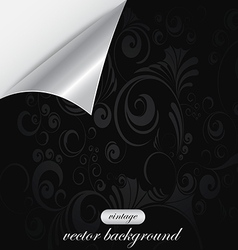 curved background 2 vector image