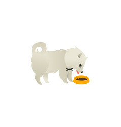 Cute fluffy little dog eating from bowl side view vector