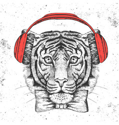 Hipster animal tiger hand drawing muzzle tiger vector