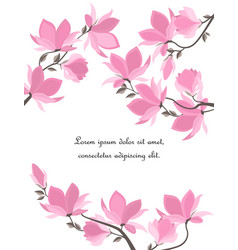 Magnolia flowers vector