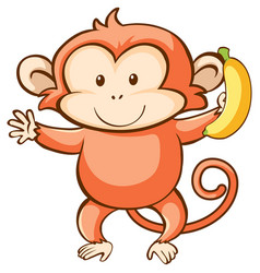 Monkey and banana on white background vector