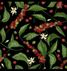 Natural seamless pattern with exotic coffea or vector
