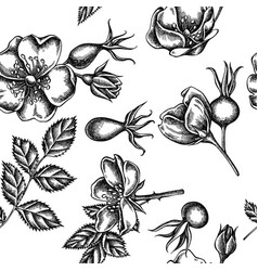 Seamless pattern with black and white dog rose vector