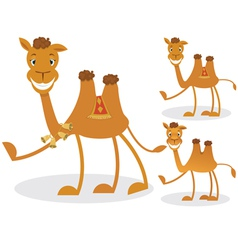 Cartoon camel vector image vector image