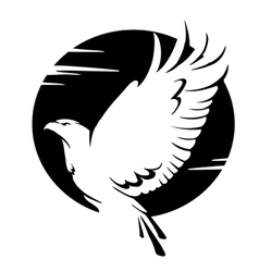 black and white eagle vector image