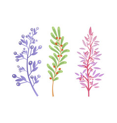 Branches of forest trees and bushes with berries vector