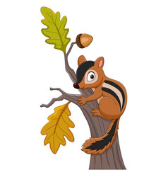 cartoon chipmunk climbing on a tree vector image