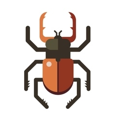 Colorful insects stag beetle vector