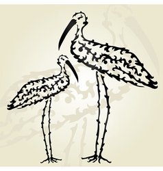 decorative storks vector image