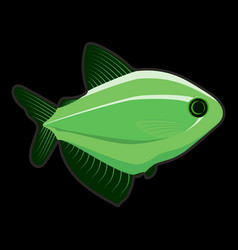 green fish on black background vector image