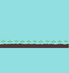 Seedlings on field growing young plants vector