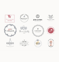 set labels and stickers for wine vector image