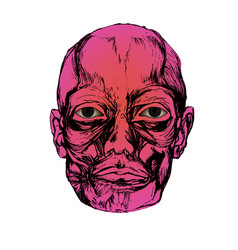 Corpse head vector