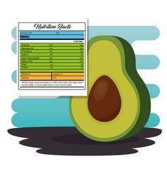 Avocado with nutrition facts vector