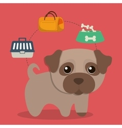 Dog cartoon pet design vector