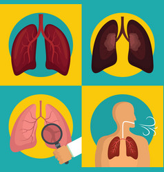 lung organ human breathing icons set flat style vector image
