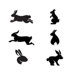 rabbit icon template vector image