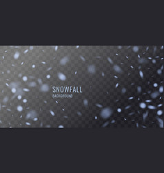 Realistic snowflake against a dark vector