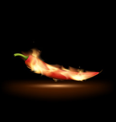 red hot chili pepper on fire traditional cooking vector image