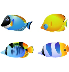 Tropical fish collection vector