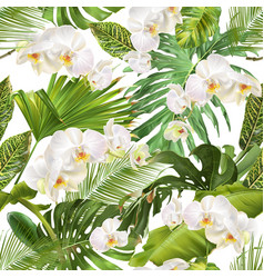 tropical orchid leave pattern vector image