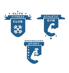 Gym Fitness Athletic and Sport Labels vector image