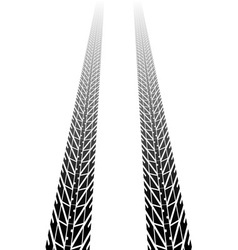 black tire tread vector image