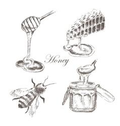 honey honeycells honeystick bee vector image
