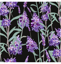 pattern with lavender hand painting vector image vector image