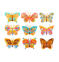 beautiful colorful butterflies set vector image