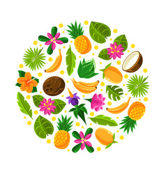 circle with tropical fruit pattern vector image