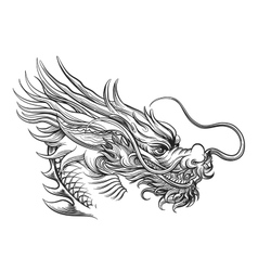 Hand drawn chineese dragon head vector image