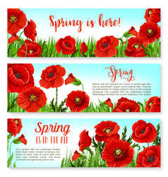 Spring time flowers on greeting banners set vector