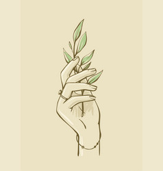 womans hand holding branch with leaves vector image