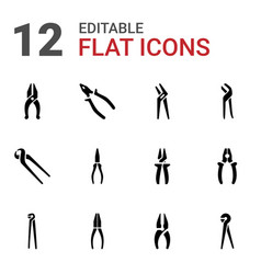 12 plier icons vector image