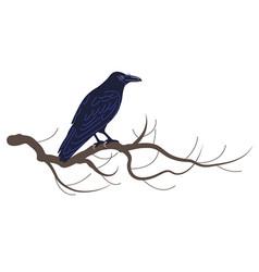 Black raven sitting on tree branch vector