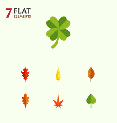 Flat icon leaves set of hickory maple foliage vector
