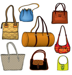 Handbags fashion bag set female purse collection vector