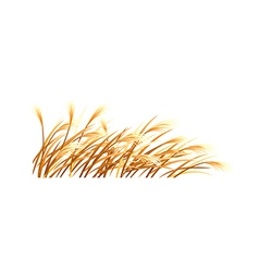 Icon reed vector