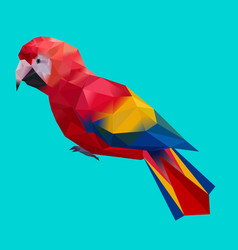 low poly colorful parrot bird on blue back ground vector image