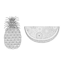 pineapple and watermelon vector image