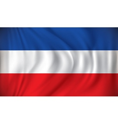 Flag of Serbia and Montenegro vector image vector image