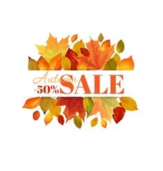 Autumn sale - colorful leaves background vector