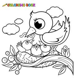 cute birds in nest vector image